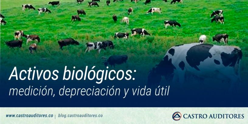 Activos biológicos: medición, depreciación y vida útil | Blog de Castro Auditores
