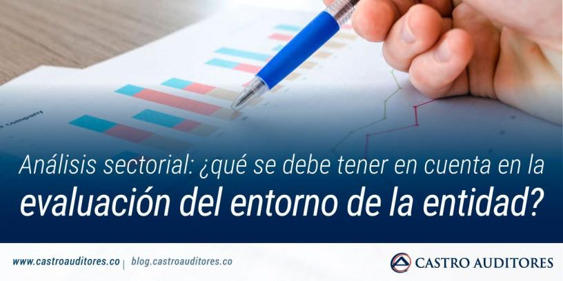 Análisis sectorial: ¿qué se debe tener en cuenta en la evaluación del entorno de la entidad? | Blog de Castro Auditores