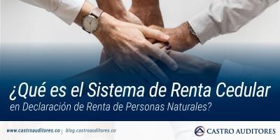 ¿Qué es el Sistema de Renta Cedular en Declaración de Renta de Personas Naturales? | Blog de Castro Auditores