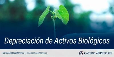 Depreciación de Activos Biológicos | Blog de Castro Auditores