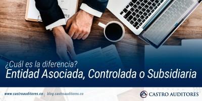 Entidad Asociada, Controlada o Subsidiaria: ¿Cuál es la diferencia? | Blog de Castro Auditores