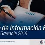 Reporte de Información Exógena por el Año Gravable 2019 | Blog de Castro Auditores