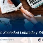 Fusión entre Sociedad Limitada y SAS | Blog de Castro Auditores