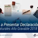 Obligados a Presentar Declaración de Renta Personas Naturales Año Gravable 2018 | Blog de Castro Auditores