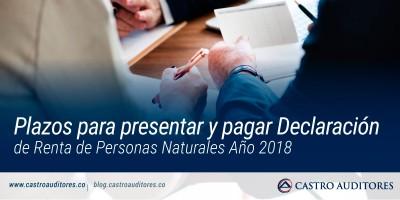 Plazos para presentar y pagar Declaración de Renta de Personas Naturales Año 2018 | Blog de Castro Auditores