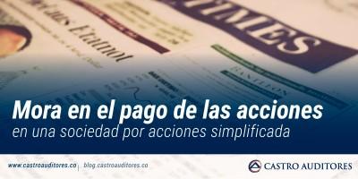 Mora en el pago de las acciones en una sociedad por acciones simplificada | Blog de Castro Auditores