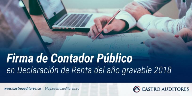 Firma de Contador Público en Declaración de Renta del año gravable 2018 | Blog de Castro Auditores