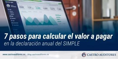 7 pasos para calcular el valor a pagar en la declaración anual del SIMPLE | Blog de Castro Auditores